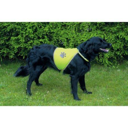 Láthatósági Mellény Kutyának (XL)