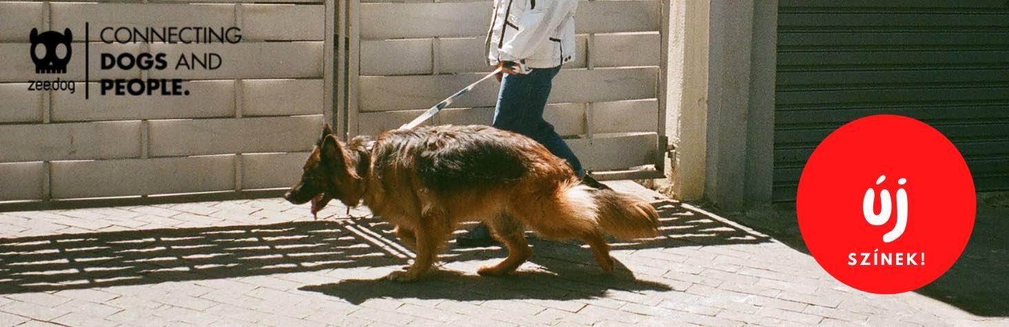 zeedog_apache